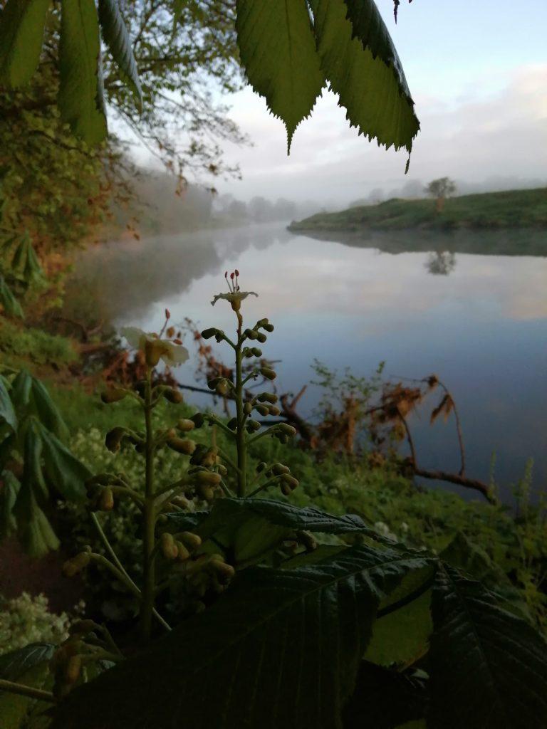 View across the river Ribble at Belisama's Retreat